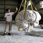Limestone Brain-and-Overhead-Crane