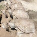 Limestone Animal Carvings